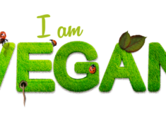 I am vegan